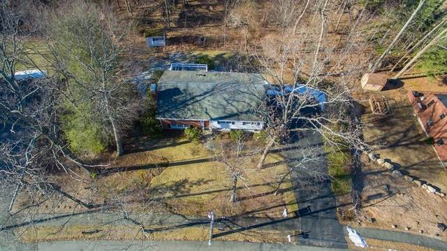 105 Lura Lane, Waltham, MA 02451 (MLS #72763847) :: Cosmopolitan Real Estate Inc.