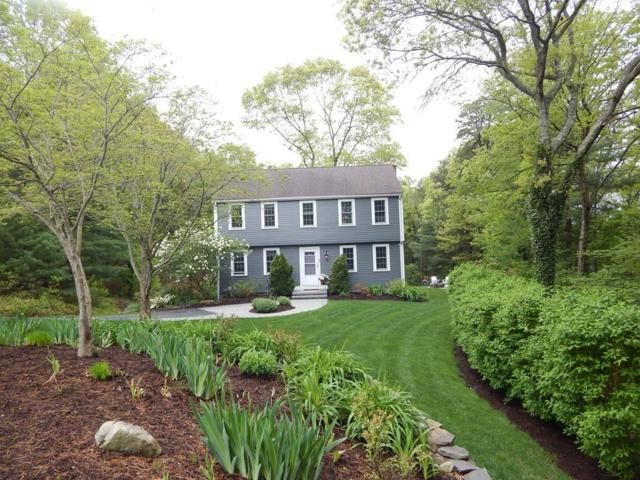 45 Saw Mill Drive, Plymouth, MA 02360 (MLS #72309877) :: ALANTE Real Estate