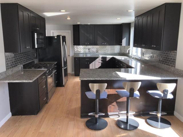 19 Ranch Rd, Falmouth, MA 02536 (MLS #72462009) :: Westcott Properties