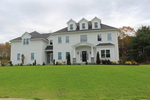 3 Ariana Lane, Norfolk, MA 02056 (MLS #72280149) :: Vanguard Realty