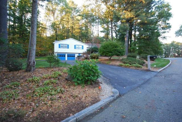 10 Carter Drive, Framingham, MA 01701 (MLS #72413328) :: ERA Russell Realty Group
