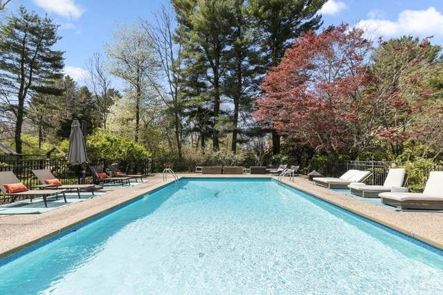 20 Greystone Rd, Dover, MA 02030 (MLS #72652747) :: The Gillach Group