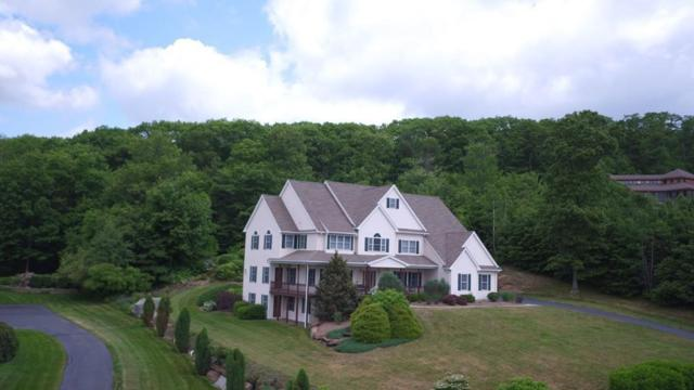 53 Spring Hill Road, Belchertown, MA 01007 (MLS #72254884) :: NRG Real Estate Services, Inc.
