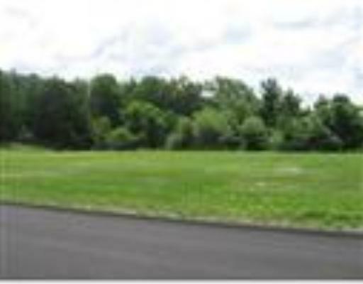 10 Jungle Road, Leominster, MA 01453 (MLS #71102828) :: Spectrum Real Estate Consultants