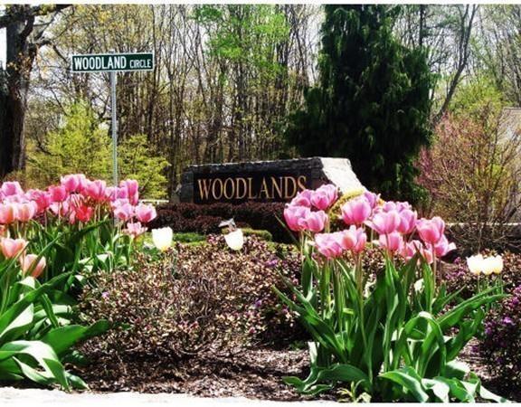 813 Ledgewood Way #813, Clinton, MA 01510 (MLS #72180123) :: The Home Negotiators