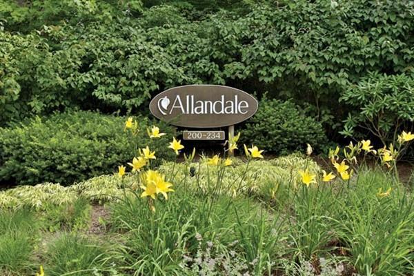 232 Allandale Rd 3B, Boston, MA 02467 (MLS #72182866) :: Goodrich Residential