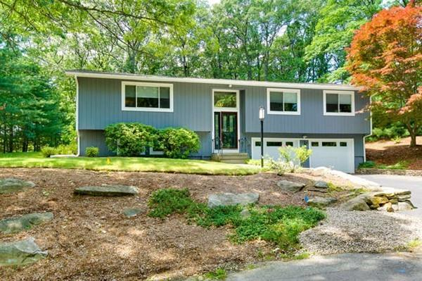14 Indian Head Heights, Framingham, MA 01701 (MLS #72187953) :: Exit Realty
