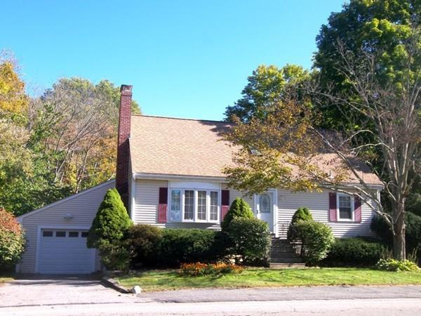 28 Bishop St, Natick, MA 01760 (MLS #72245474) :: Driggin Realty Group
