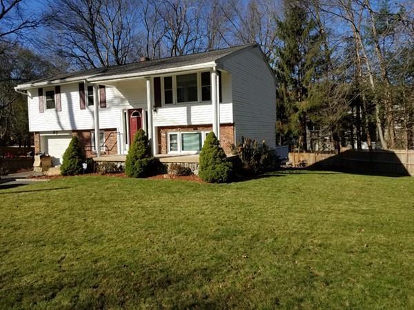 87 Brigham St., Hudson, MA 01749 (MLS #72255661) :: The Home Negotiators