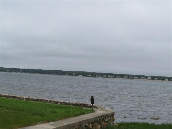 262 B Seaside Lane, Marion, MA 02738 (MLS #72264076) :: Berkshire Hathaway HomeServices Mel Antonio Real Estate
