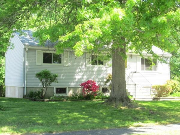 9 Greenwood Ave, Shrewsbury, MA 01545 (MLS #72333575) :: Hergenrother Realty Group