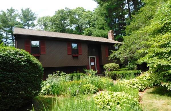 125 Riverview Dr, Bridgewater, MA 02324 (MLS #72364965) :: ALANTE Real Estate