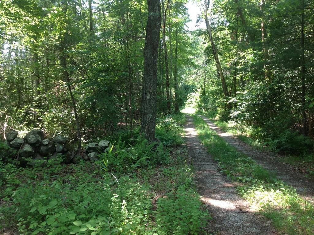 Lot 1 Featherbed Ln - Photo 1