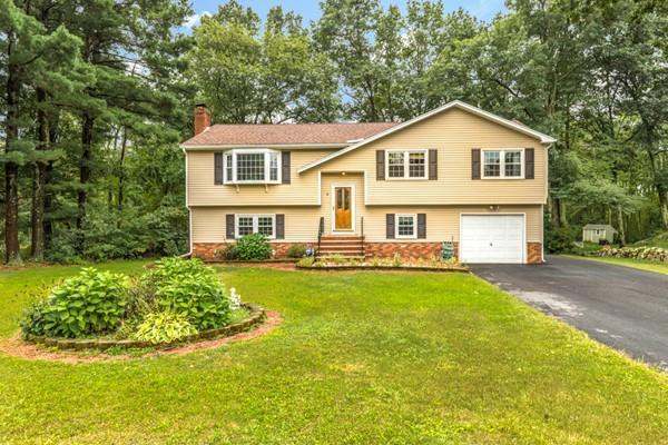 6 Great Neck Drive, Wilmington, MA 01887 (MLS #72394987) :: Exit Realty