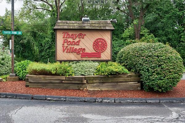 32 Thayer Pond Dr #14, Oxford, MA 01537 (MLS #72396695) :: Westcott Properties