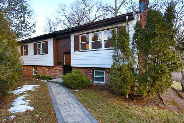 15 Hiawatha Lane, Arlington, MA 02474 (MLS #72450793) :: EdVantage Home Group