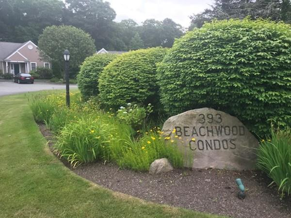 393 N.Falmouth Hwy #3, Falmouth, MA 02556 (MLS #72527651) :: The Russell Realty Group