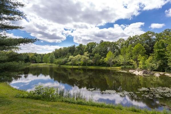 12 Fiske Pond Road, Holliston, MA 01746 (MLS #72529688) :: Apple Country Team of Keller Williams Realty