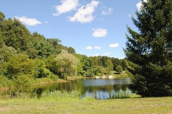 13 Fiske Pond Road, Holliston, MA 01746 (MLS #72529695) :: Apple Country Team of Keller Williams Realty