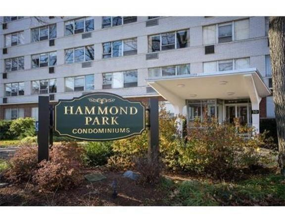 10 Hammond Pond Pkwy #206, Newton, MA 02467 (MLS #72538399) :: Lauren Holleran & Team