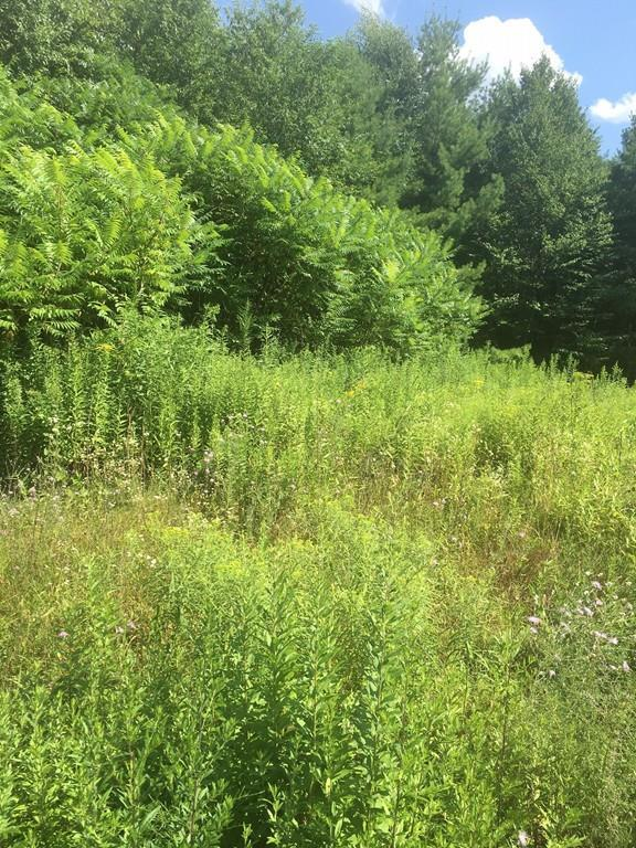 Lot 5 Palley Village Pl, Amherst, MA 01002 (MLS #72541572) :: NRG Real Estate Services, Inc.