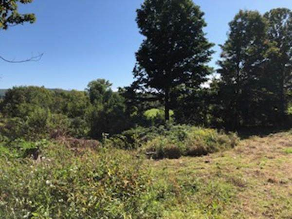 Lot 6 South East Street, Amherst, MA 01002 (MLS #72565680) :: Trust Realty One