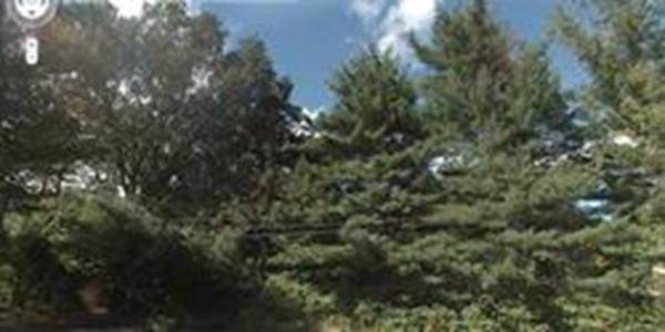 48 Purinton St, Shrewsbury, MA 01545 (MLS #72568166) :: Maloney Properties Real Estate Brokerage