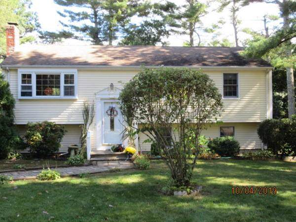 25 Shaw Street, Carver, MA 02330 (MLS #72578331) :: Vanguard Realty