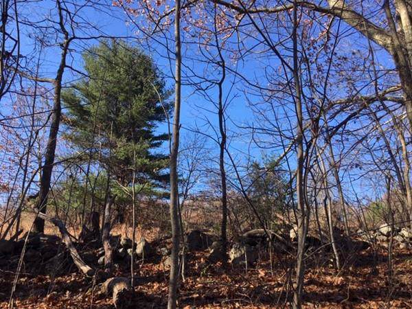 Lot 2A Turkey Hill Road, Rutland, MA 01543 (MLS #72589494) :: The Duffy Home Selling Team