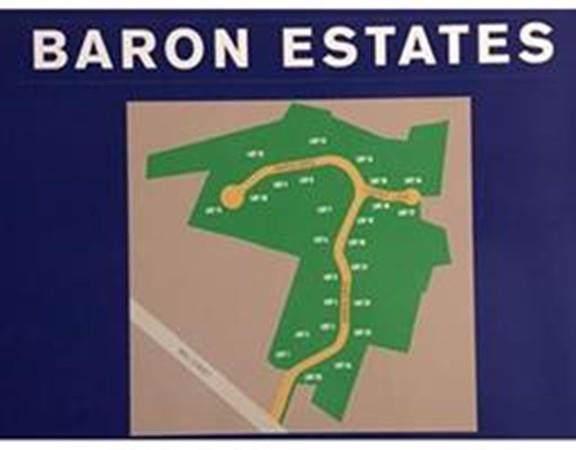 Lot 21 Baron Drive - Photo 1
