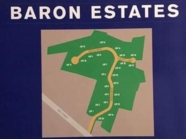 lot 13 Baron Drive - Photo 1