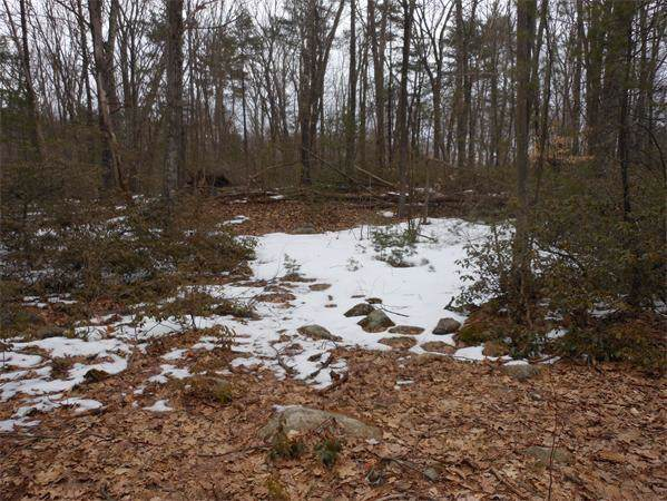 0 ( Lot 7) Conway Dr, Leicester, MA 01524 (MLS #72600822) :: Conway Cityside