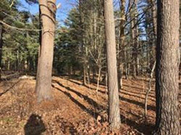 Lot 1 Gary Lane, Easton, MA 02356 (MLS #72606622) :: DNA Realty Group