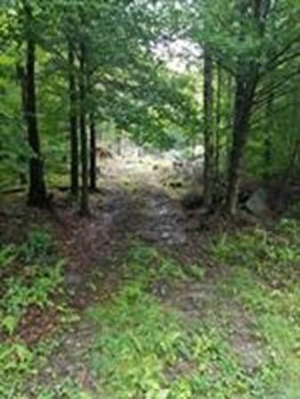 0 Spruce Corner, Ashfield, MA 01330 (MLS #72608760) :: Driggin Realty Group