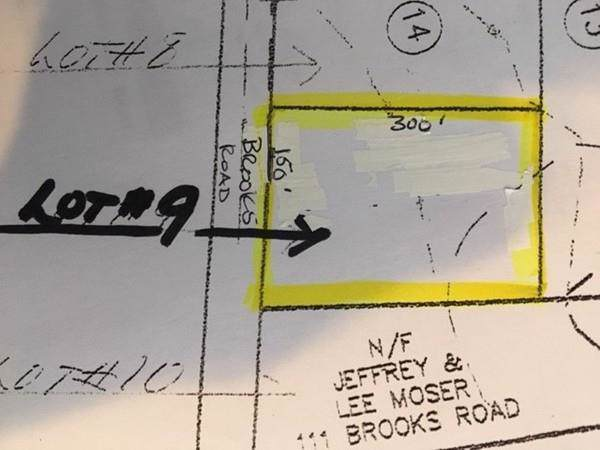 Lot 9 Brooks Rd, Templeton, MA 01468 (MLS #72613139) :: Anytime Realty