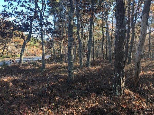 635 Old Bass River Rd, Dennis, MA 02638 (MLS #72616270) :: DNA Realty Group