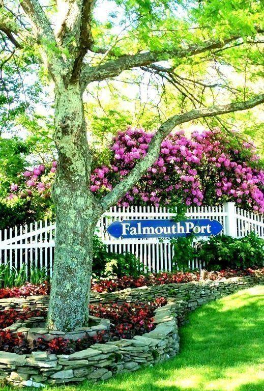 217 Falmouthport #217, Falmouth, MA 02536 (MLS #72625454) :: Charlesgate Realty Group