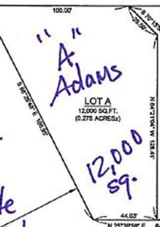 LOT A Adams St - Photo 1