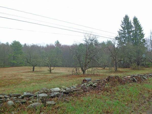 0 Cave Hill Rd, Leverett, MA 01054 (MLS #72646069) :: DNA Realty Group
