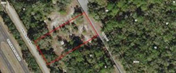 9305 N Buttercup Way, Crystal River, FL 34429 (MLS #72659398) :: Spectrum Real Estate Consultants