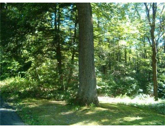 Lot 53-A Pantry Road, Hatfield, MA 01038 (MLS #72661512) :: Westcott Properties