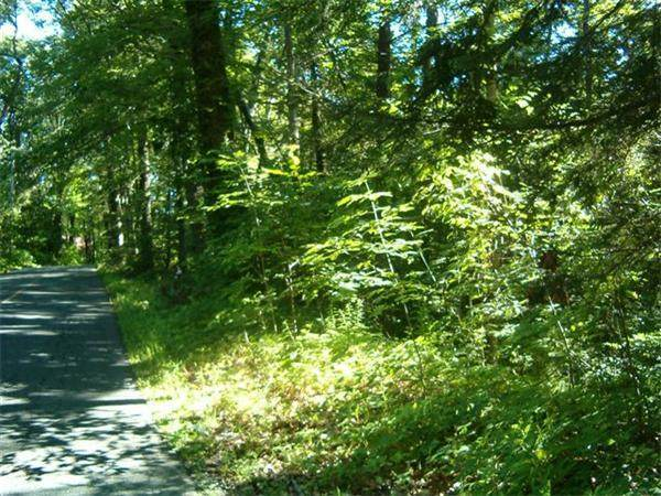 Lot 53-B Pantry Road, Hatfield, MA 01038 (MLS #72661513) :: Westcott Properties