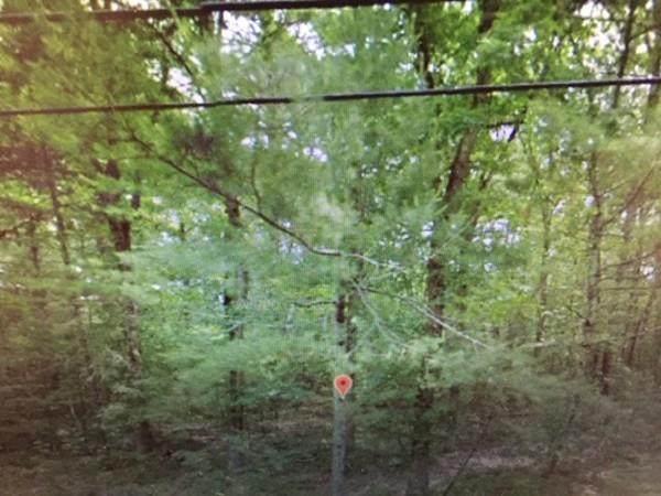 0 Quaddick Town Farm Rd, Thompson, CT 06277 (MLS #72666147) :: Exit Realty