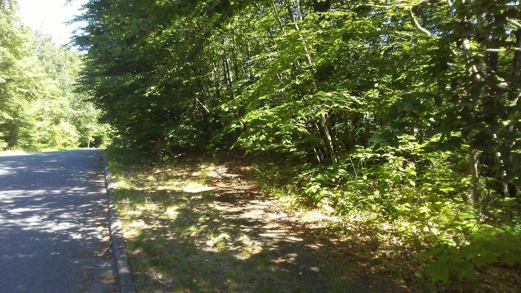 175 Woodland Way - Photo 1