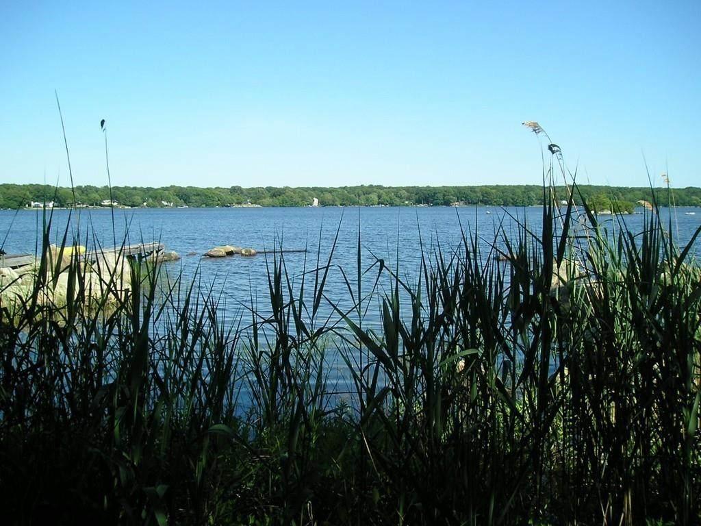 0000 Sawdy Pond Ave. - Photo 1