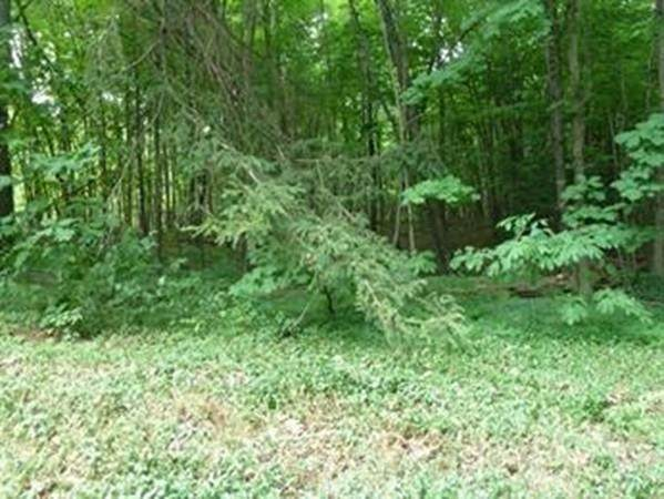 Lot 3 Mountain Road, Gill, MA 01354 (MLS #72691726) :: Charlesgate Realty Group