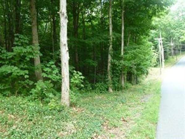 Lot 4 Mountain Road, Gill, MA 01354 (MLS #72691728) :: Charlesgate Realty Group