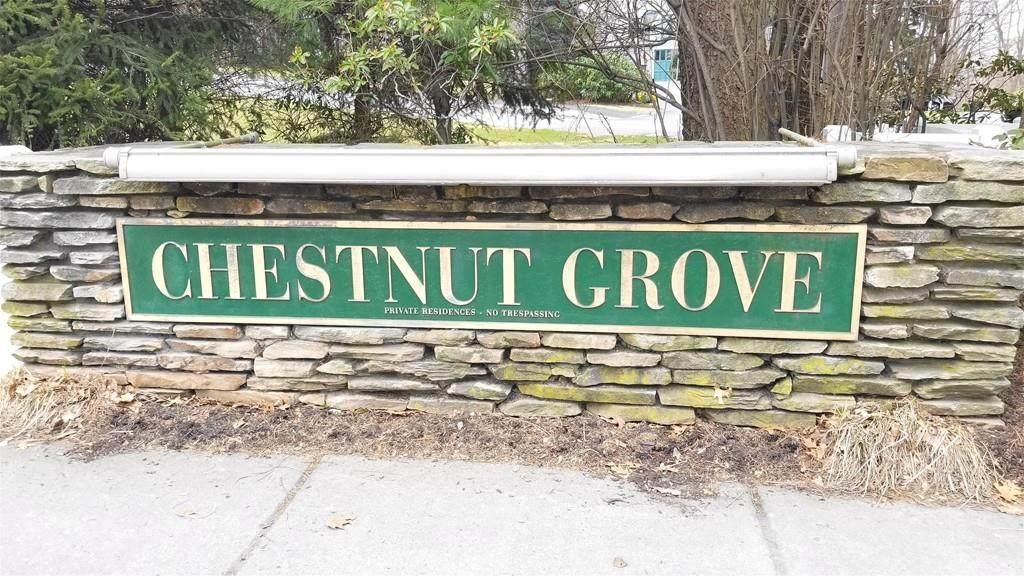 1175 Chestnut St - Photo 1