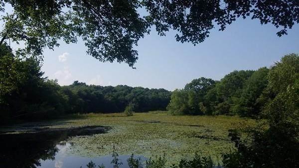 140 Willis Pond Rd - Photo 1