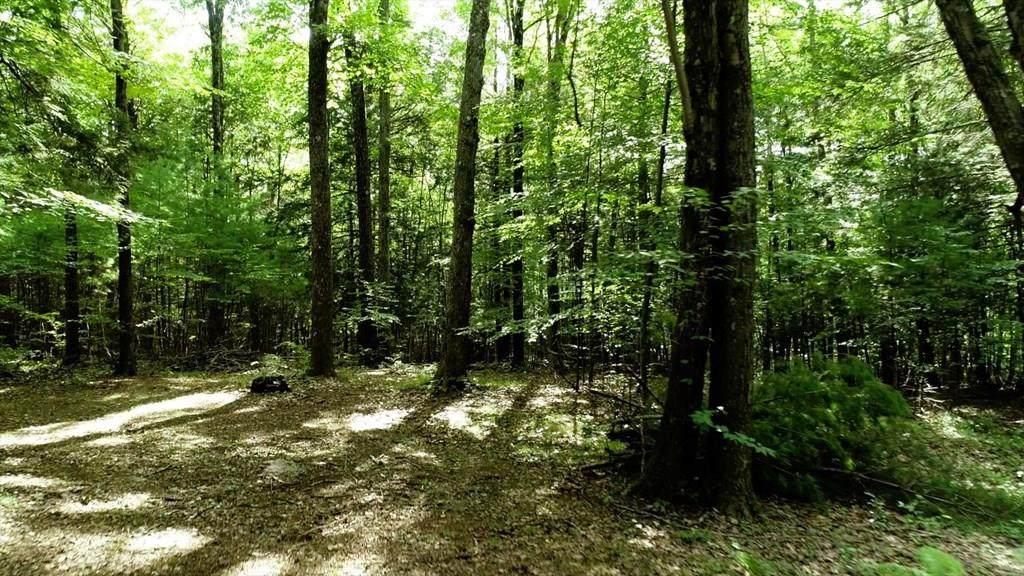 42 Rustlewood Ridge - Photo 1